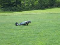 Name: Badius Fly in 09 015 (Medium).jpg Views: 143 Size: 61.3 KB Description: