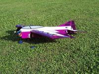 Name: Badius Fly in 09 023 (Medium).jpg Views: 155 Size: 143.9 KB Description: