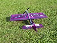 Name: Badius Fly in 09 025 (Medium).jpg Views: 158 Size: 161.9 KB Description: Chrome lightning graphics