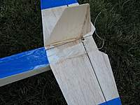 Name: missing fin and taped on tail.jpg