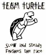 Name: team turtle.jpg Views: 266 Size: 11.2 KB Description: