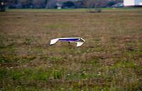 Name: flight4_sm.jpg Views: 42 Size: 246.9 KB Description: Did I mention that I flew inverted a lot?
