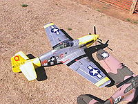 Name: FMS War Birds 018.jpg