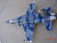 Name: My F-5E repainted enhanced (2).JPG