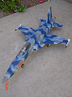 Name: My F-5E repainted enhanced (23).jpg Views: 115 Size: 152.6 KB Description: