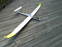 Name: P1000149.jpg Views: 1480 Size: 122.4 KB Description: Dg-1000. fluorescent wing tips help with orientation