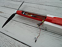 Name: P1010959.jpg