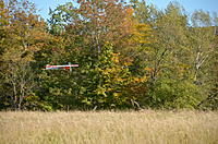 Name: DSC_2540.jpg Views: 112 Size: 316.0 KB Description: landing in the hay