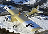 Name: 6.jpg Views: 90 Size: 53.8 KB Description: Blood on the wing...