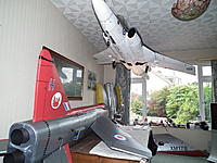 Name: Buccaneer Hanging 003.jpg