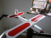 "Name: babyf.jpg Views: 235 Size: 215.3 KB Description: 29 "" baby Falcon"