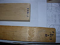 Name: DSCN0110.JPG