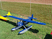 Name: bluecub.jpg Views: 156 Size: 256.8 KB Description: