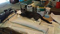 Name: 20170618_123005.jpg