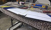 Name: IMAG0449.jpg