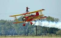 Name: WingWalk-3.jpg