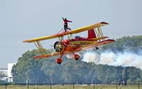 Name: WingWalk-4.jpg