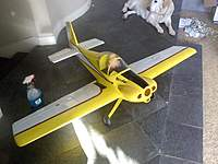 Name: downsized_1212101349.jpg