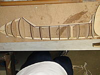 Name: DSC02950.jpg
