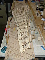 Name: DSC03137.jpg