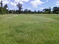 Name: mowed.jpg