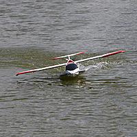 Name: 1st water landing.jpg Views: 90 Size: 55.9 KB Description: cool bird, weak tail