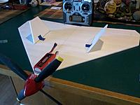 Name: funny wing.jpg