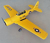 Name: 20200704_145600.jpg