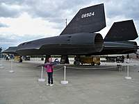 Name: Pitts-Blackbird 030.jpg