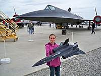Name: Pitts-Blackbird 026.jpg