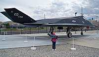 Name: Pitts-Blackbird 058.jpg
