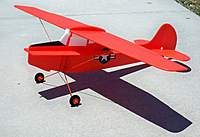 Name: Birddog Painted 001.jpg