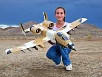 Name: Desert A-10 (19 Oct 10) 006.jpg Views: 206 Size: 99.9 KB Description: