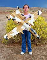 Name: Desert A-10 (19 Oct 10) 009.jpg