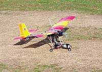 Name: Cox Sky Rally 026.jpg