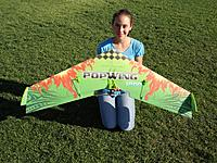 Name: PopWing 1200 2.jpg