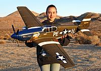 Name: 16 Feb 2013 041.jpg