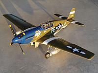 Name: 16 Feb 2013 054.jpg