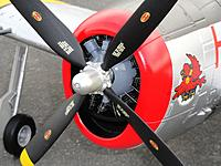 Name: Durafly 006.jpg