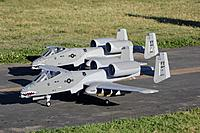 Name: LX A-10's.jpg