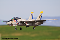 Name: freewing F-14 Tomcat Prado Air Park 10-24-15 Eight.png