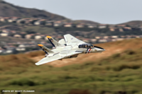 Name: freewing F-14 Tomcat Prado Air Park 10-24-15 Two.png