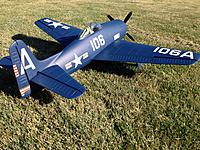 Name: Navy Cat 1.jpg