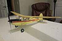 Name: IMG_5196.jpg