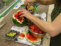 Name: melon 2 001.JPG Views: 179 Size: 299.4 KB Description:
