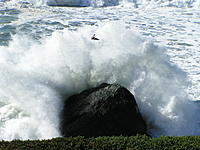 Name: beach day 005.JPG Views: 125 Size: 592.2 KB Description: