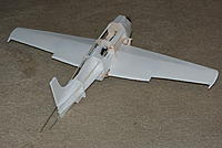 Name: DSC_0031.jpg