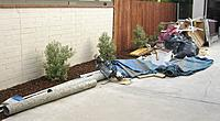 Name: Debris pile Version 2 (2).jpg