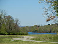 Name: DSCN4417.jpg