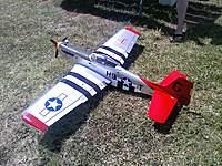 Name: plane.jpg Views: 260 Size: 143.9 KB Description: Before Maiden